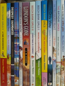 Bundle of Dernier Publishing paperbacks